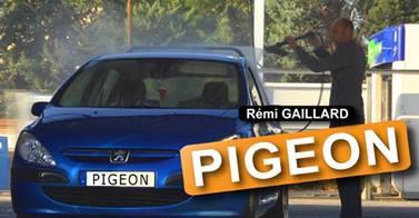 Rémi gaillard pigeon